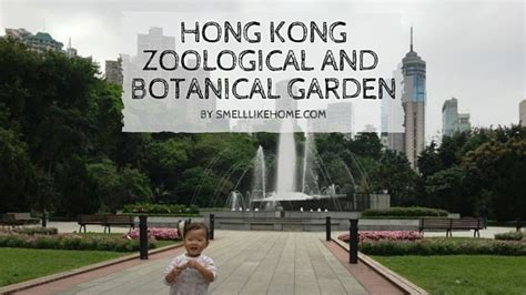 Hong Kong Zoological And Botanical Gardens Review Smell Zoological And Botanical Gardens