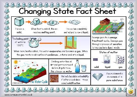 simple definition of matter 105 best images about science on food chains