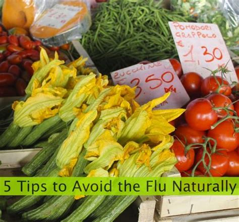 5 Most Effective Ways To Fight Flu by 5 Ways To Fight The Flu Naturally The Travel Pharmacist