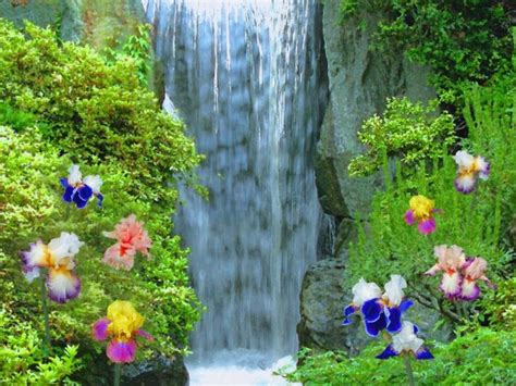 beautiful waterfalls with flowers most beautiful waterfalls painting in oils photography