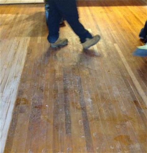 Pet stains in hardwood floors, can they be refinished in