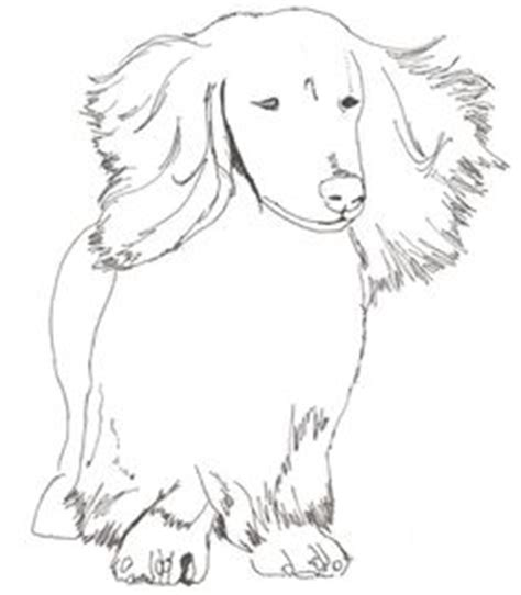 dachshund puppies coloring pages halloween coloring pages dachshund sts pinterest