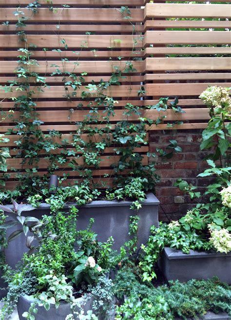 contemplative garden  york ny cdls
