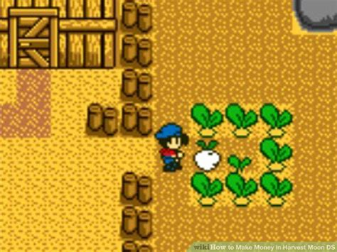 Harvest Moon Ds Maker Shed how to make money in harvest moon ds 7 steps with pictures