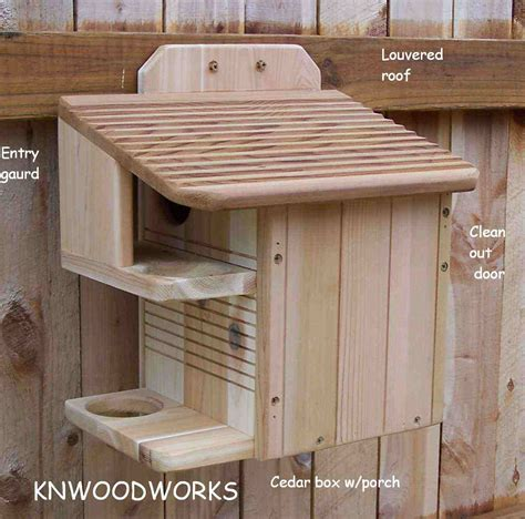 squirrel house plans flying squirrel house plans on two acres in town buster 2 southern flying squirrel
