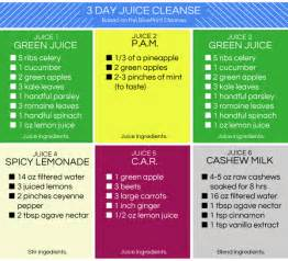 at home juice cleanse plan not feeling a pricey juice cleanse try a homemade one