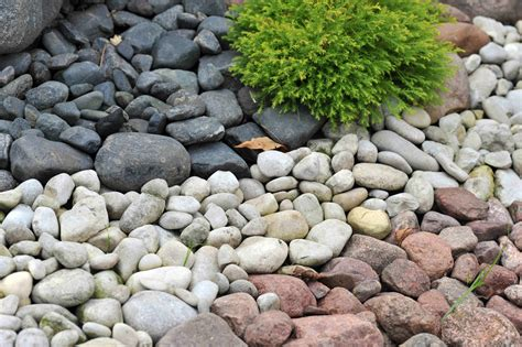 backyard pebbles stone pebbles enhance the landscape design decor stone