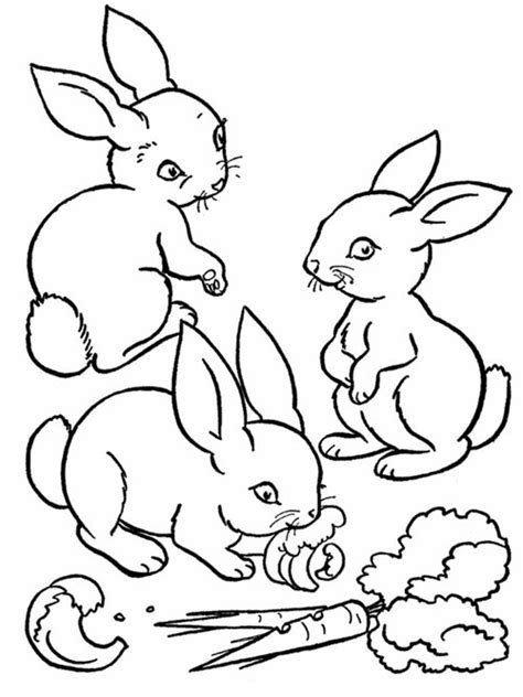 free coloring pages baby farm animals coloring pages for
