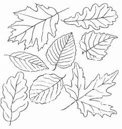 fall leaves coloring pages fall coloring pages coloring town