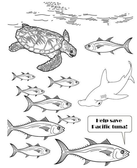 tuna fish colouring pages page 2