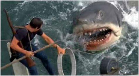 Cape Cod Mystery - reviews public enemies star trek jaws 2 187 beyond the rhetoric