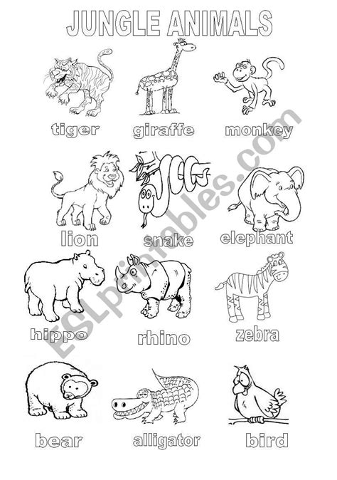 free printable jungle worksheets jungle animals coloring sheet esl worksheet by shannoncronin