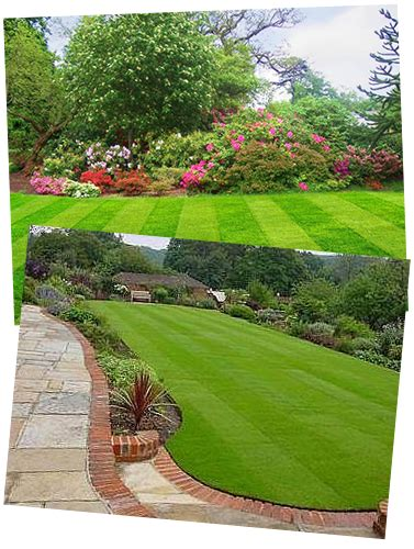 House Entrance Ideas contact beautiful lawns liverpool