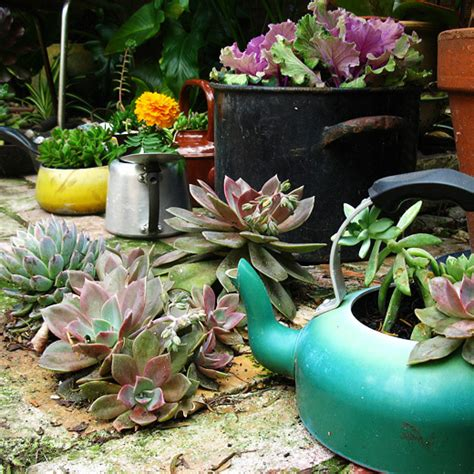 Things To Use As Planters by 25 Interesting Diy Ideas To Reuse An Things