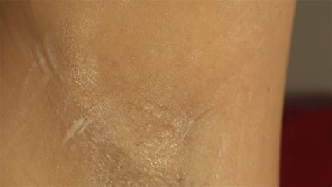 armpits the female armpit fetish close up personal 1 4k timelapse of the growing belly of a pregnant woman