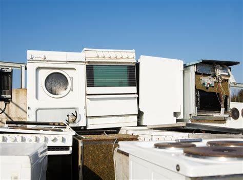 Good Backyard Pets Where To Recycle Appliances In Chicago The Allstate Blog