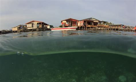 Cool Home Design Blogs by 11 Alarming Facts About Sea Level Rise Mnn Mother