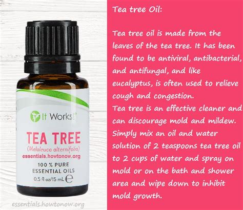 bed bugs tea tree oil 1000 images about it works essential oils on pinterest