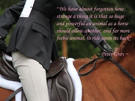 the tack room modesto 17 best images about quotes on achieve your goals so true and things to