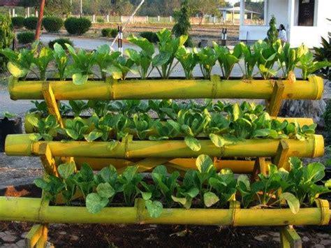 teknologi reproduksi  tumbuhan rezki napitupulu