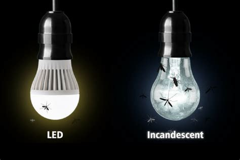 outdoor light bulbs that don t attract bugs do led light bulbs attract bugs frys feit hempzen info
