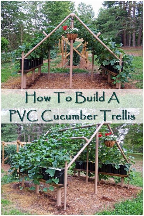 how to build a trellis 78 best ideas about cucumber trellis on pinterest raised