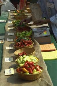Ultimate Fall Guide To Food Pickle Day Chili Pepper Botanic Garden Chili Pepper Festival