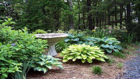 cheap landscaping ideas for small backyards garden design 55616 garden inspiration ideas