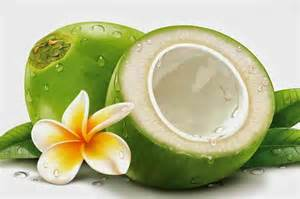 21 benefits of green coconut for human health inetarticle