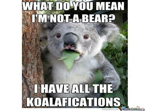 Koala Meme Generator - koala bear memes image memes at relatably com