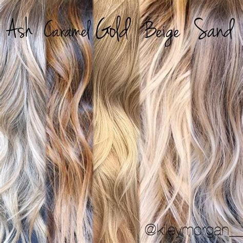different shades of blonde hair different tones hair stylists and stylists on pinterest