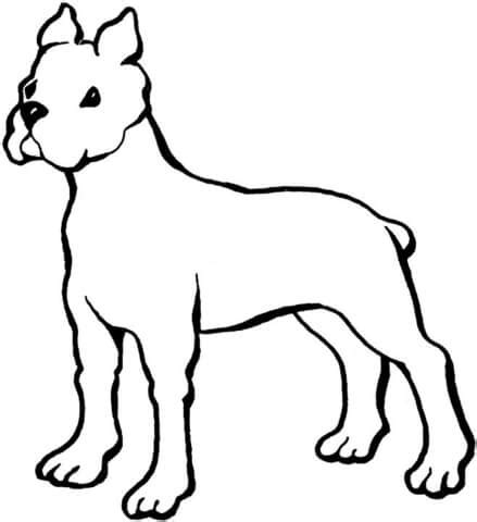 coloring page boxer dog boxer coloring page supercoloring com