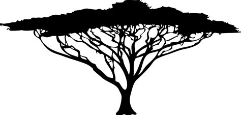 Ballard And Designs best 15 tree acacia silhouette clip images