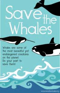 The more beautiful question save the whales again