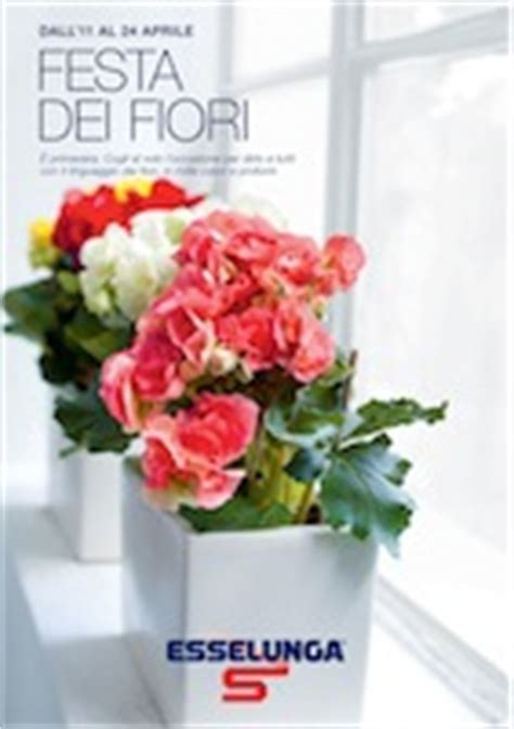 offerte volantino panorama fiori esselunga quot festa dei fiori quot volantinoweb