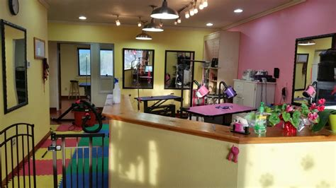 the dog house pet salon houston house pet salon 28 images 25 best ideas about grooming salons on grooming pet