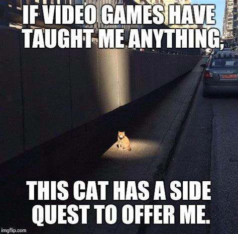 Meme Quest - six of the best if video games have taught me anything