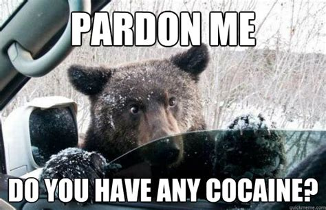 Cocaine Memes - pardon me do you have any cocaine cocaine bear quickmeme