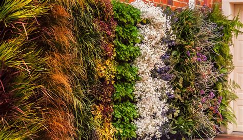 how to build a vertical wall garden how to build a vertical garden living wall green wall