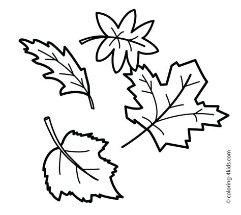 coloring page of small leaves leaf coloring pages for preschool many interesting cliparts