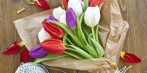 how to keep tulips alive in 3 simple steps huffpost