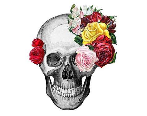 Flower Skull flowers skulls skulls fan 36136881 fanpop