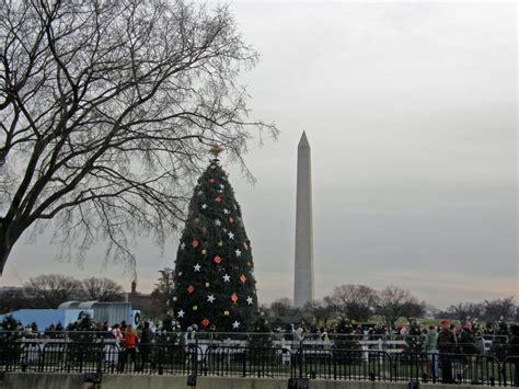 panoramio photo of the national christmas tree