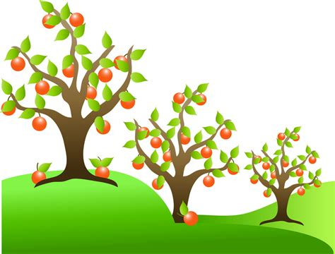 fruit tree clipart fruit tree clip cliparts co