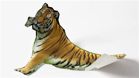 Paper Tiger innovation paper tiger or king of the hill
