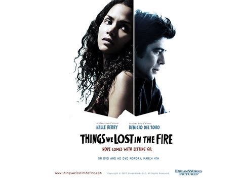 the things we lost things we lost in the fire benicio del toro wallpaper 1704511 fanpop