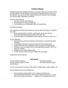 how to write a good resume objective line - Tips To Writing A Good Resume