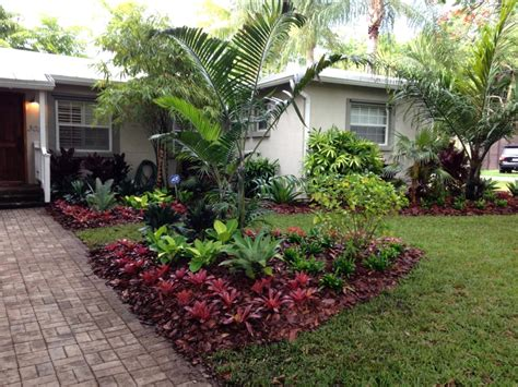 florida backyards landscape low maintenance tropical palms colorful bromeliads and low maintenance ground covers add texture and to