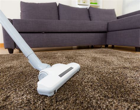 sofa cleaning sydney carpet cleaning sydney allergy carpet vidalondon
