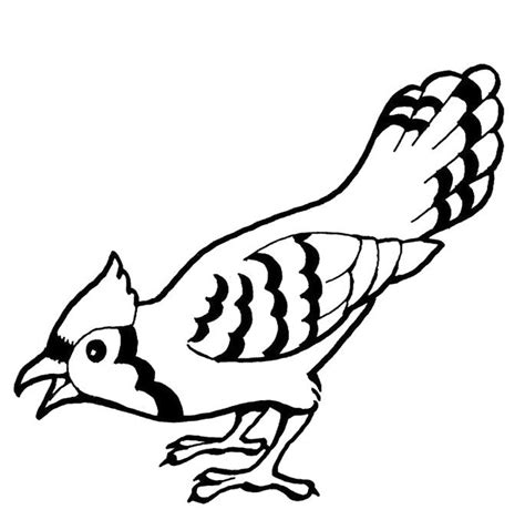 bluebird coloring sheet coloring pages
